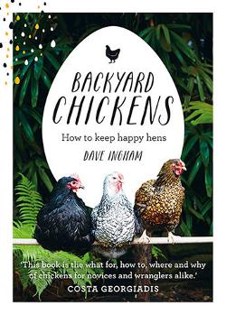 Backyard Chickens - How to Keep Happy Hens