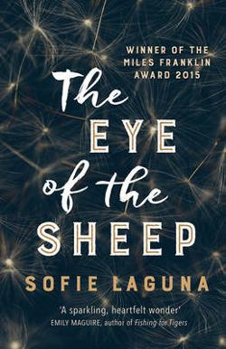 Eye of the Sheep