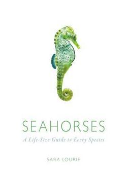 Seahorses - A Life-Size Guide to Every Species
