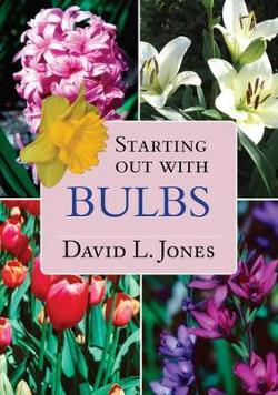 Starting Out with Bulbs