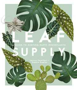 Leaf Supply - A guide to keeping happy house plants