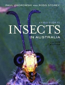 Field Guide to Insects in Australia
