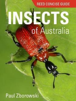 Reed Concise Guide to Insects of Australia