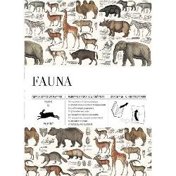 Wrapping Paper Book - Fauna